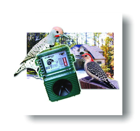 Sonic Repeller To Get Rid of Birds For Good